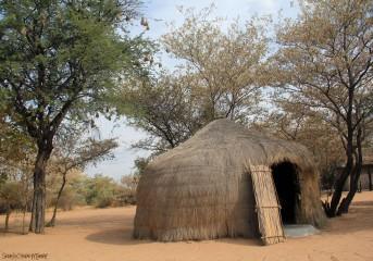BushmanHut