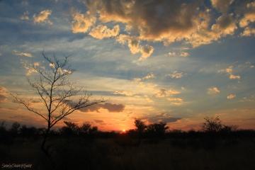KalahariSunset