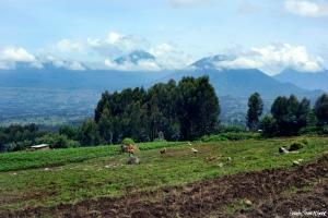 Rwandan Countryside